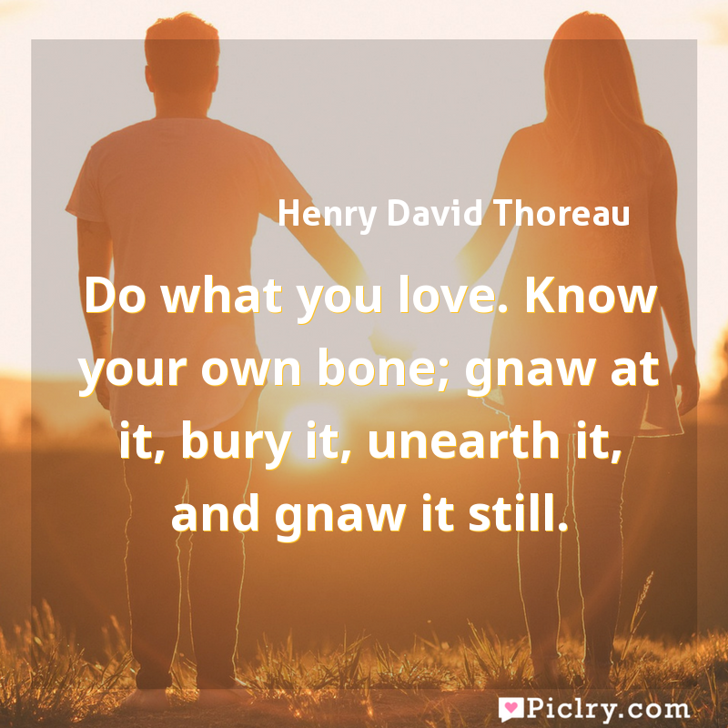 Meaning of Do what you love. Know your own bone; gnaw at it, bury it, unearth it, and gnaw it still. - Henry David Thoreau quote images - full hd 4k quote wallpaper - Wall art and poster