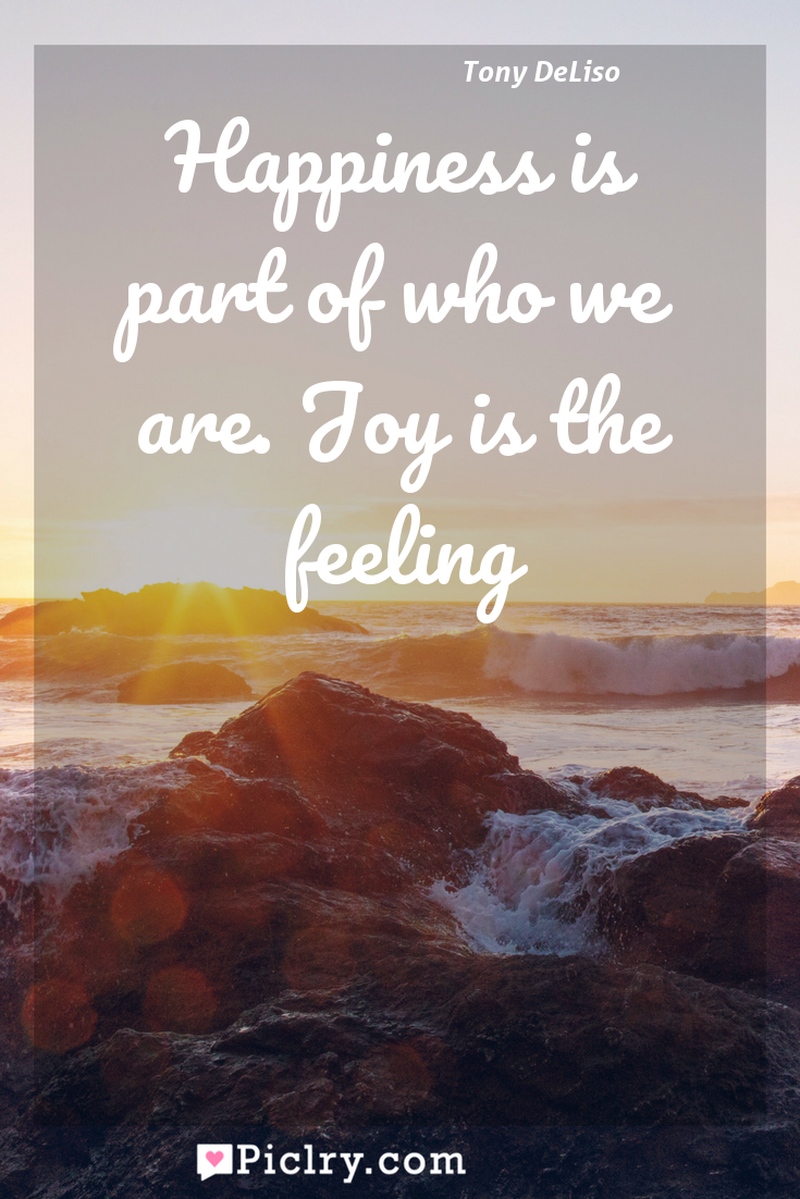 Meaning of Happiness is part of who we are. Joy is the feeling - Tony DeLiso quote photo - full hd4k quote wallpaper - Wall art and poster
