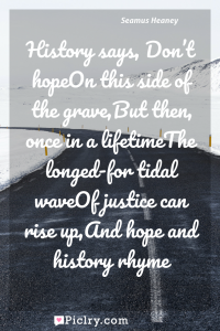 Meaning of History says, Don't hopeOn this side of the grave,But then, once in a lifetimeThe longed-for tidal waveOf justice can rise up,And hope and history rhyme - Seamus Heaney quote photo - full hd4k quote wallpaper - Wall art and poster