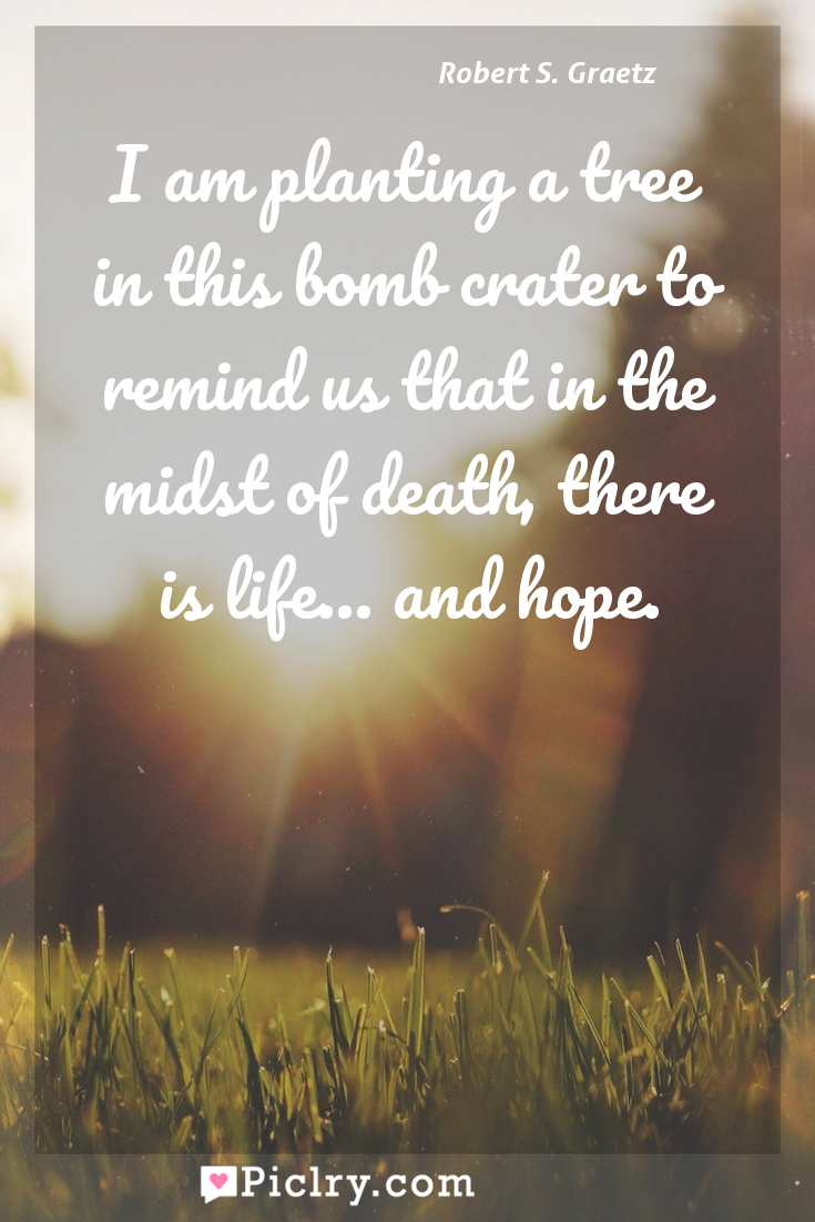 Meaning of I am planting a tree in this bomb crater to remind us that in the midst of death, there is life... and hope. - Robert S. Graetz quote photo - full hd4k quote wallpaper - Wall art and poster
