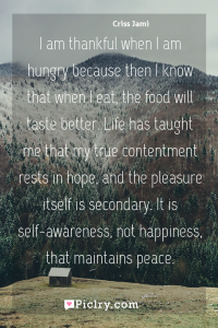Meaning of I am thankful when I am hungry because then I know that when I eat, the food will taste better. Life has taught me that my true contentment rests in hope, and the pleasure itself is secondary. It is self-awareness, not happiness, that maintains peace. - Criss Jami quote photo - full hd4k quote wallpaper - Wall art and poster