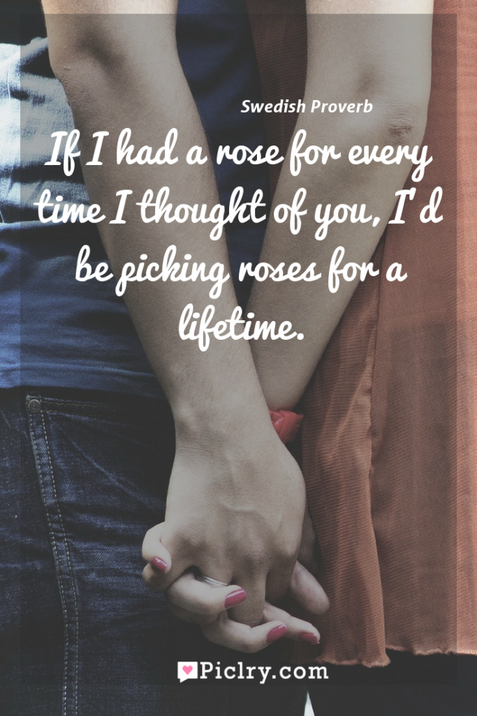 Meaning of If I had a rose for every time I thought of you, I'd be picking roses for a lifetime. - Swedish Proverb quote photo - full hd4k quote wallpaper - Wall art and poster