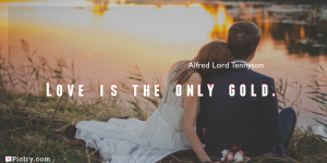 Meaning of Love is the only gold.- Alfred Lord Tennyson quote images - full hd 4k quote wallpaper - Download Wall art and poster