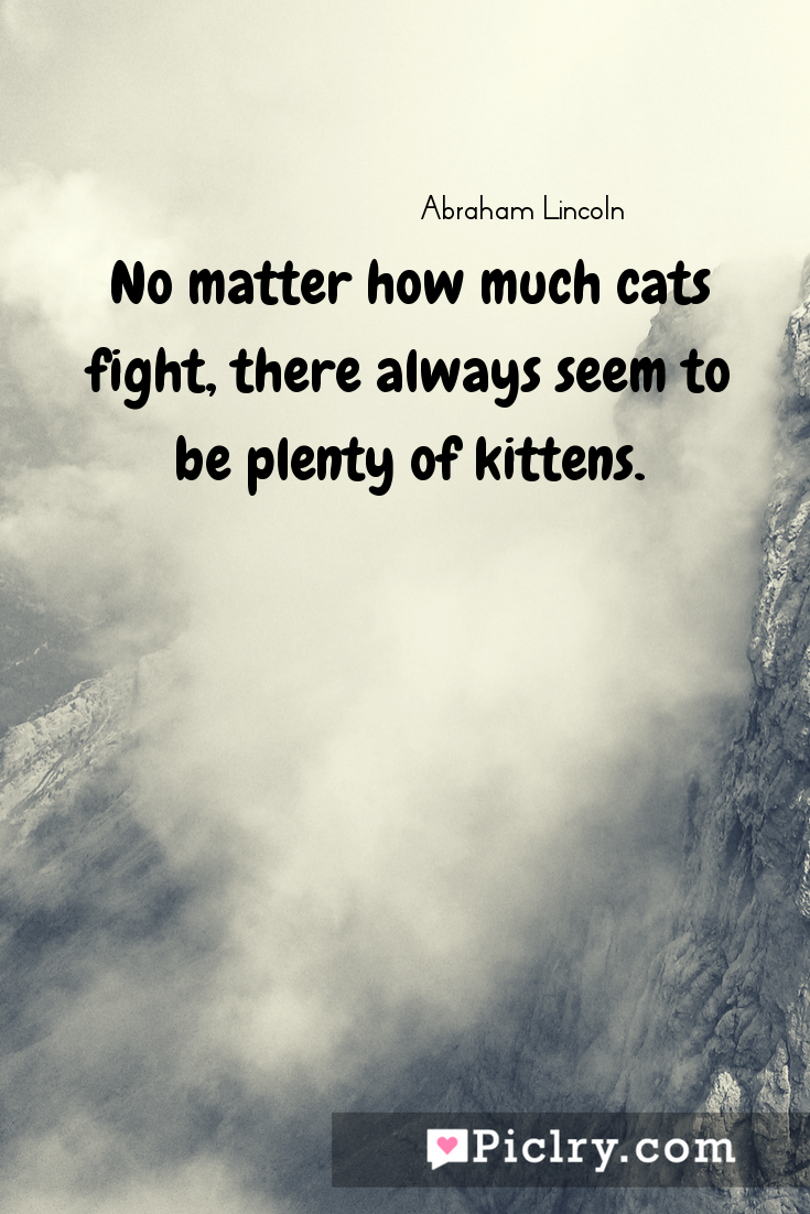 Meaning of No matter how much cats fight