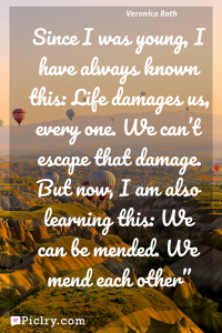 Meaning of Since I was young, I have always known this: Life damages us, every one. We can't escape that damage. But now, I am also learning this: We can be mended. We mend each other - Veronica Roth quote photo - full hd4k quote wallpaper - Wall art and poster
