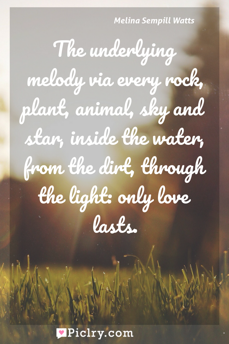 Meaning of The underlying melody via every rock, plant, animal, sky and star, inside the water, from the dirt, through the light: only love lasts. - Melina Sempill Watts quote photo - full hd4k quote wallpaper - Wall art and poster