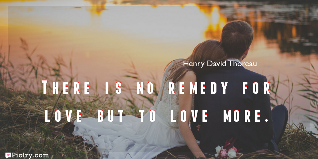 Meaning of There is no remedy for love but to love more.- Henry David Thoreau quote images - full hd 4k quote wallpaper - Download Wall art and poster