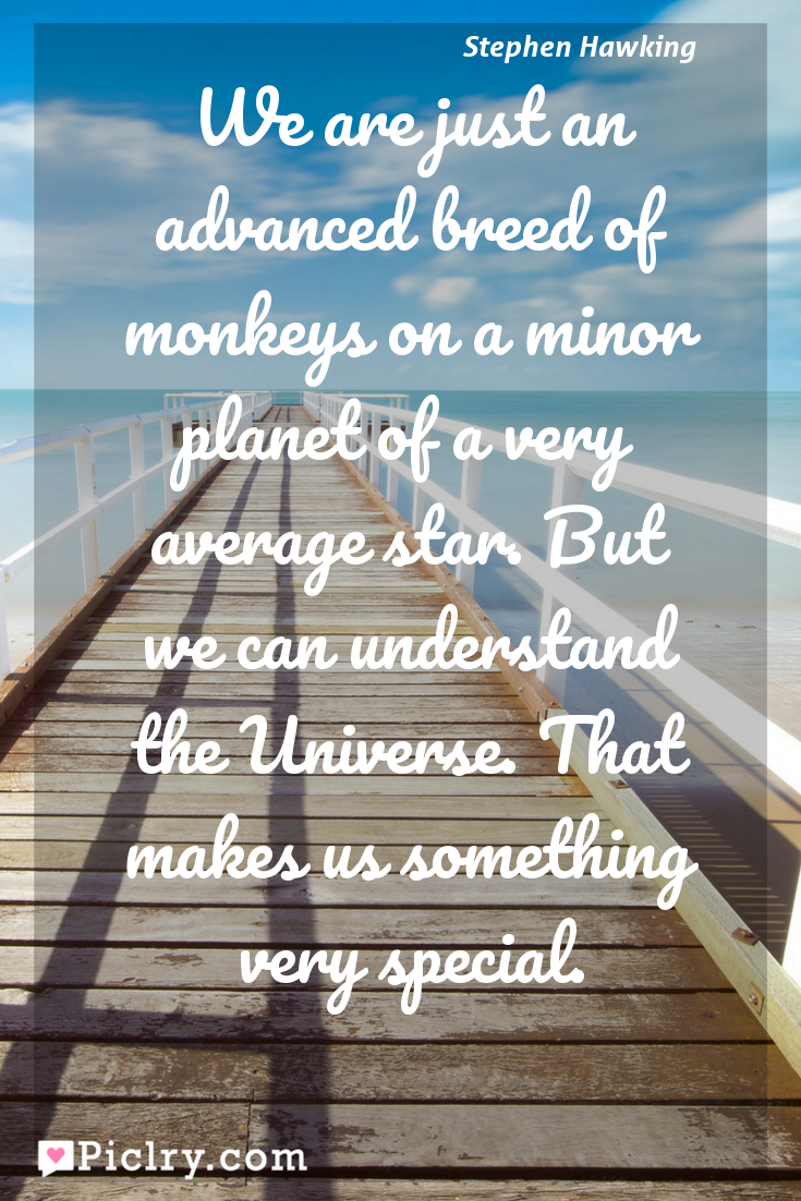 Meaning of We are just an advanced breed of monkeys on a minor planet of a very average star. But we can understand the Universe. That makes us something very special. - Stephen Hawking quote photo - full hd4k quote wallpaper - Wall art and poster