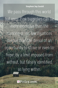 Meaning of We pass through this world but once. Few tragedies can be more extensive than the stunting of life, few injustices deeper than the denial of an opportunity to strive or even to hope, by a limit imposed from without, but falsely identified as lying within. - Stephen Jay Gould quote photo - full hd4k quote wallpaper - Wall art and poster