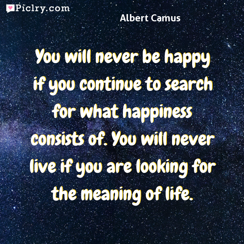 Meaning of You will never be happy if you continue to search for what happiness consists of. You will never live if you are looking for the meaning of life. - Albert Camus quote photo - full hd 4k quote wallpaper - Wall art and poster