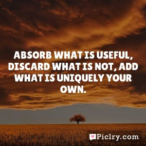 Absorb what is useful, Discard what is not, Add what is uniquely your own.