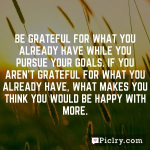 Be grateful for what you already have while you pursue your goals. If you aren't grateful for what you already have, what makes you think you would be happy with more.