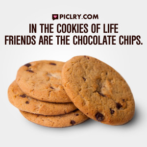 cookies of life friends are chocolate chips