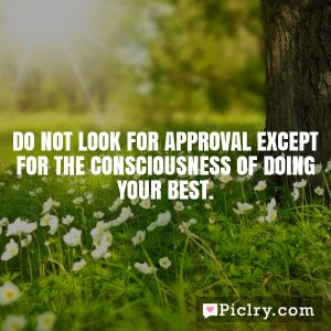 Do not look for approval except for the consciousness of doing your best.