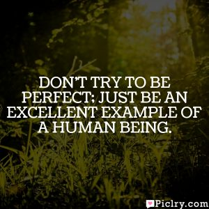 Don't try to be perfect; Just be an excellent example of a human being.