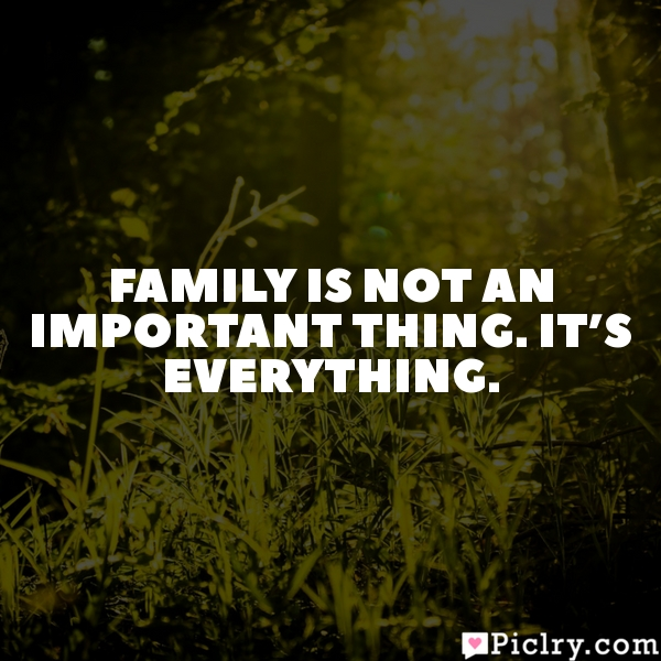 Family is not an important thing. It's everything.