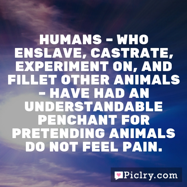 Humans – who enslave, castrate, experiment on, and fillet other animals – have had an understandable penchant for pretending animals do not feel pain.