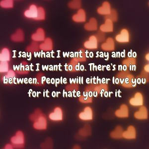 I say what I want to say and do what I want to do. There's no in between. People will either love you for it or hate you for it
