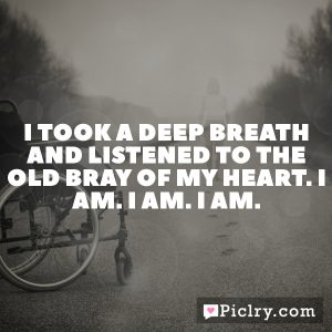 I took a deep breath and listened to the old bray of my heart. I am. I am. I am.