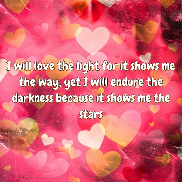 I will love the light for it shows me the way, yet I will endure the darkness because it shows me the stars