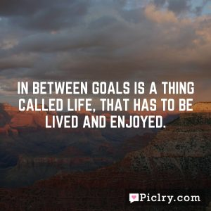In between goals is a thing called life, that has to be lived and enjoyed.