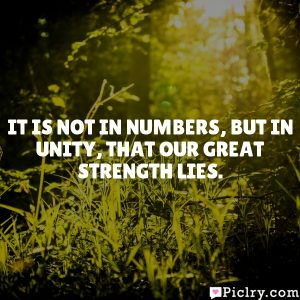 It is not in numbers, but in unity, that our great strength lies.
