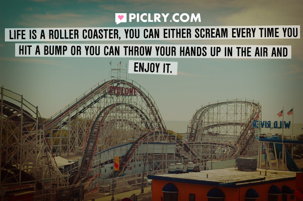 life is a roller coaster quote