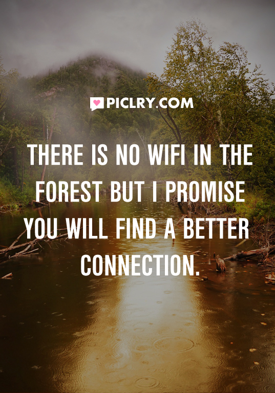 no wifi in forest picture quote