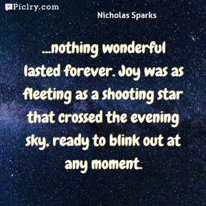 Meaning of ...nothing wonderful lasted forever. Joy was as fleeting as a shooting star that crossed the evening sky, ready to blink out at any moment. - Nicholas Sparks quote photo - full hd 4k quote wallpaper - Wall art and poster