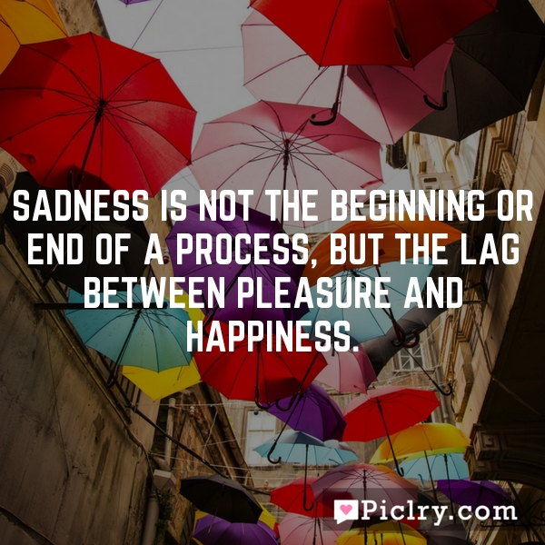 Sadness is not the beginning or end of a process, but the lag between pleasure and happiness.