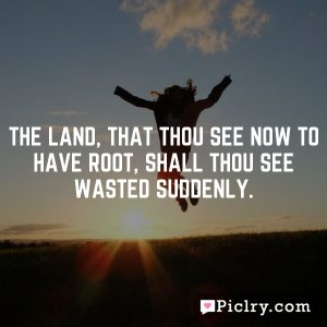 The land, that thou see now to have root, shall thou see wasted suddenly.