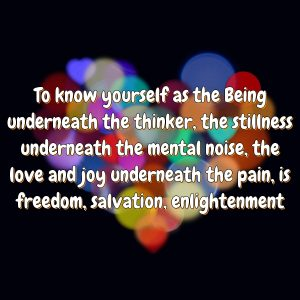 To know yourself as the Being underneath the thinker, the stillness underneath the mental noise, the love and joy underneath the pain, is freedom, salvation, enlightenment