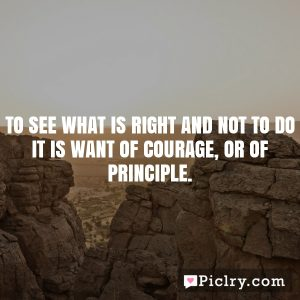 To see what is right and not to do it is want of courage, or of principle.