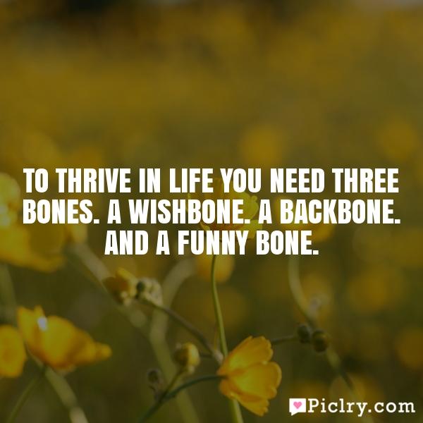 To thrive in life you need three bones. A wishbone. A backbone. And a funny bone.