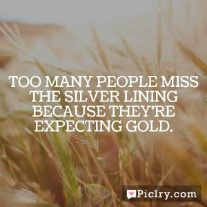 Too many people miss the silver lining because they're expecting gold.