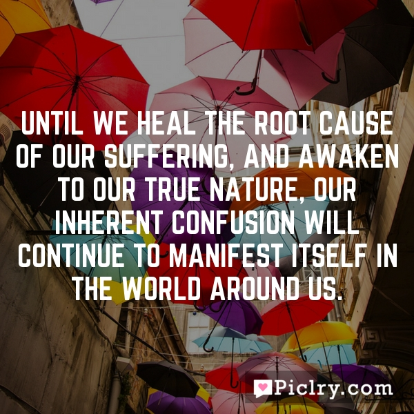 Until we heal the root cause of our suffering, and awaken to our true nature, our inherent confusion will continue to manifest itself in the world around us.