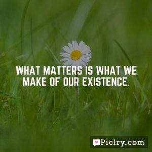 What matters is what we make of our existence.