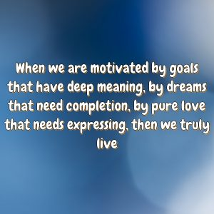 When we are motivated by goals that have deep meaning, by dreams that need completion, by pure love that needs expressing, then we truly live