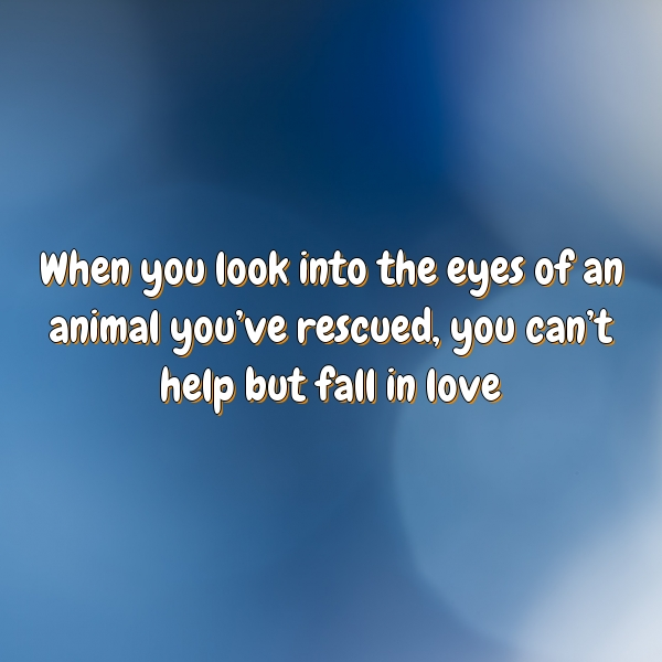 When you look into the eyes of an animal you've rescued, you can't help but fall in love