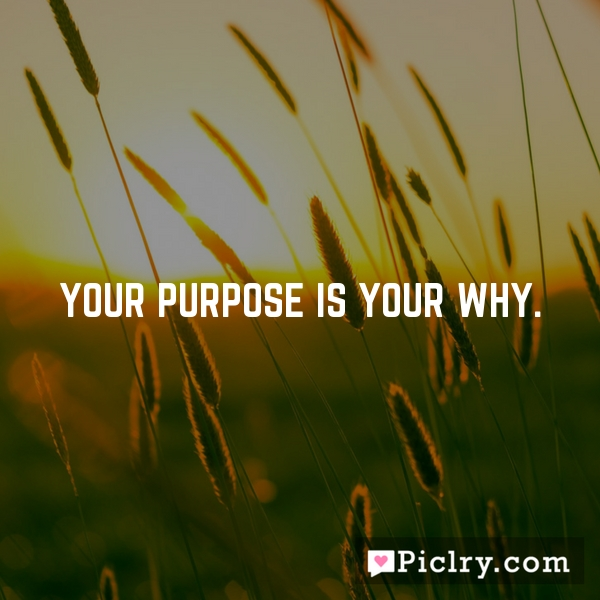 Your purpose is your why.